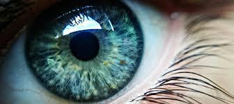 Ayur Read Pro - bolji vid - kako funkcionira - instrukcije - tablete
