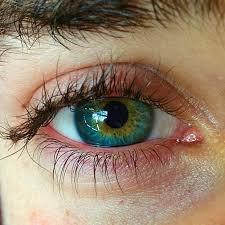 Cleanvision - bolji vid - kako funkcionira - gdje kupiti - ljekarna