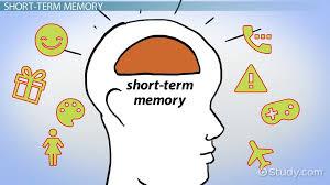 Neurocyclin – gel – gdje kupiti - sastojci