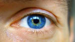 LumiViss Pro - bolji vid - sastojci - sastav - cijena