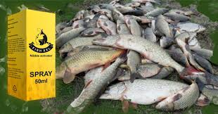 Fish XXL - aktivator ribe – sastav – Amazon – test