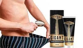 Gigant - review - proizvođač - sastav - kako koristiti